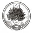 Curly – Queen (videoclip)